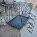 Small-World-Tv-kennel